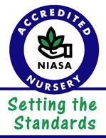 woodlea nursery niasa accreditation